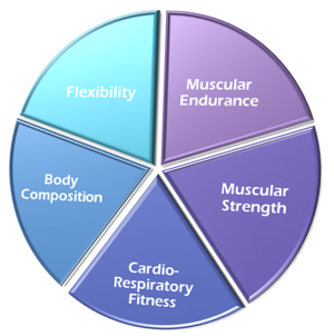 maria pontillo components of health