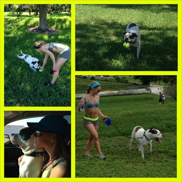 maria pontillo dog workout fitness